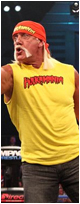 Hulk Hogan Comments on Vince Russo and TNA